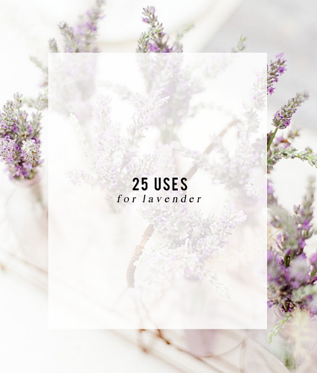25 Uses for Lavender